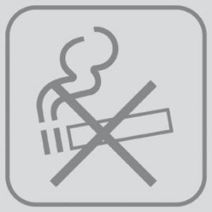 T701027 PVC sticker No smoking (multiple of 5 pcs)