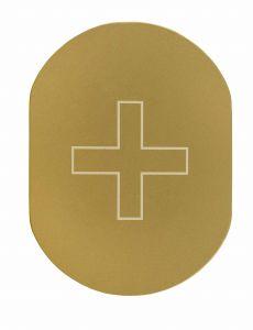 T719938 Infirmery pictogram Golden aluminium